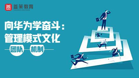 向华为学奋斗: 管理模式文化-团队-机制